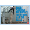 Smart may have the brain - Diesel SS2010 Advertising Campaign