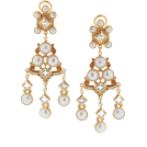 Danijela ♥´´¯`•.¸¸.Ƹ̴Ӂ̴Ʒ Earrings -  Percossi Papi