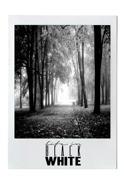 Life In Black In White#6
