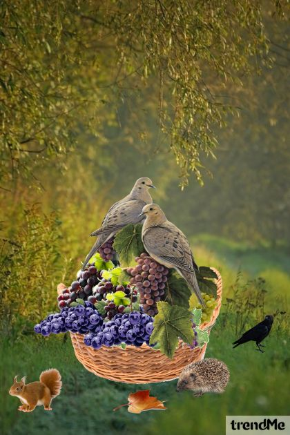 Birds On Grapes (1)