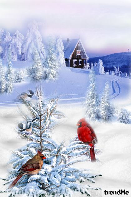 Birds In Cold Snowy Winter