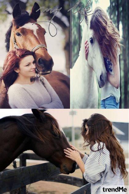Horses - My Life<3!