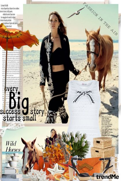 Ljeto,ljeto . . .i konjići :)