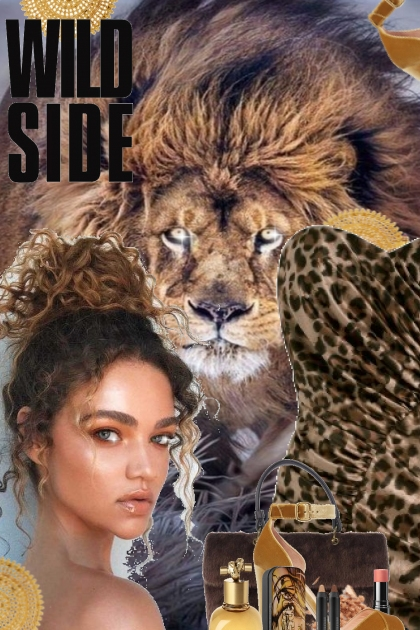 Take The Wild Side