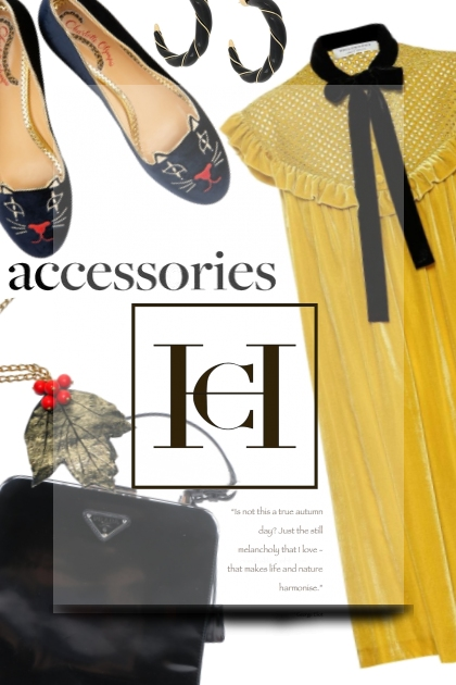 accesories for cH