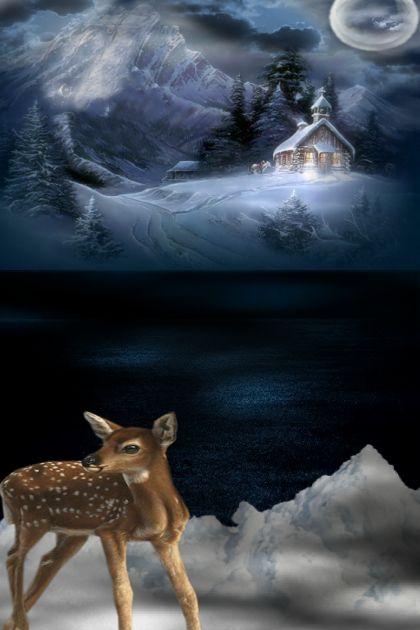 Wintery Midnight Wonder
