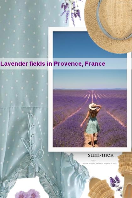 Lavender fields in Provence, France- Kreacja