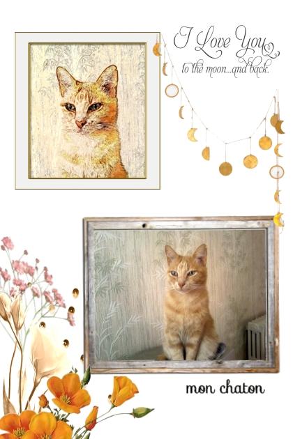 My orange cat- Fashion set