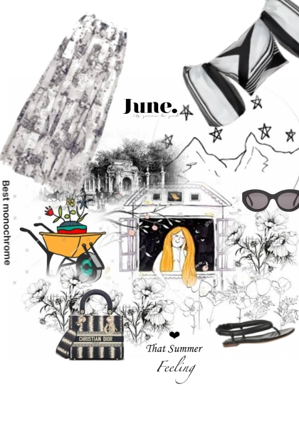 black and white and summery