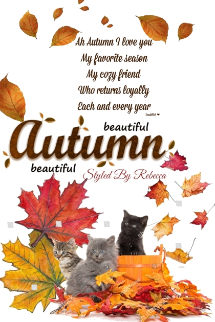 Pets and Autumn