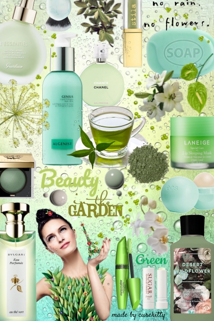 Beauty in the Garden: No Rain Equals No Flowers!