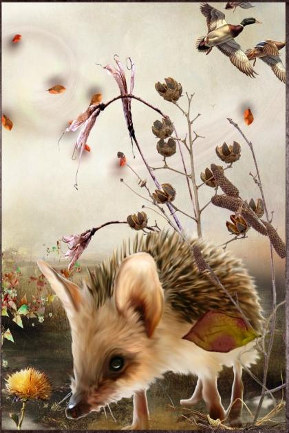 Little Hedgie in Fall
