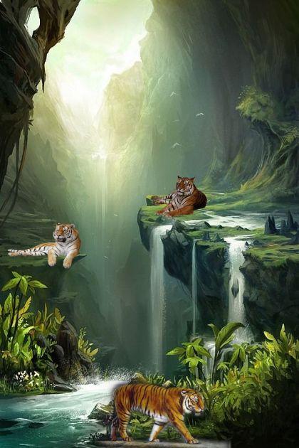 Tiger Paradise