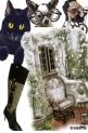 Modni mačak