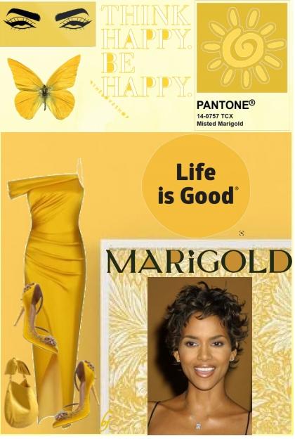Pantone Color--Marigold- Fashion set