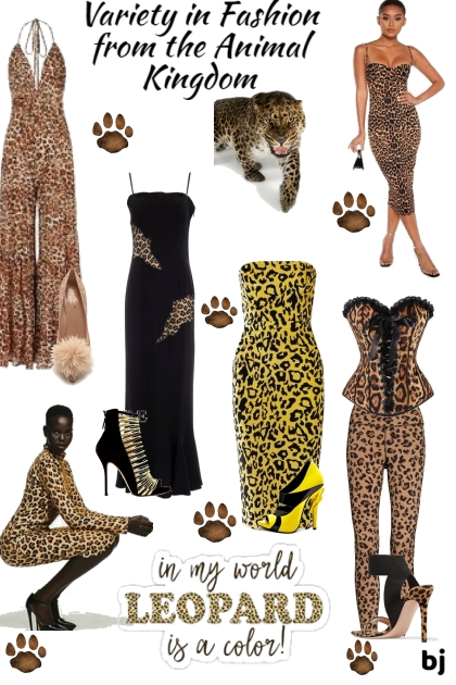 Variety in Fashion From the Animal Kingdom
