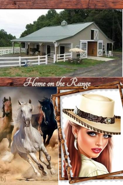 Home on the Range- combinação de moda