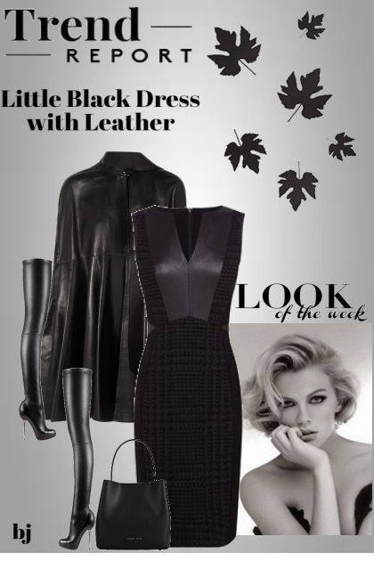 Little Black Dress with Leather