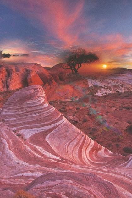 The Painted Desert!