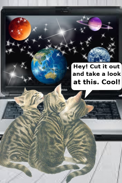 Discovering The Laptop Screen Saver!
