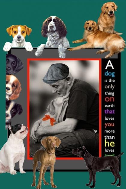 A Dog Named Bo
