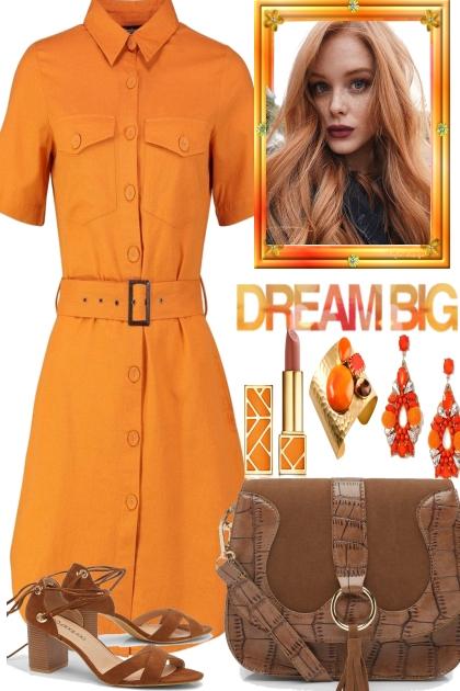 BROWNIES AND ORANGE- Fashion set