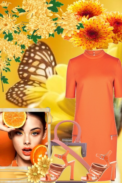 BUTTERFLY AND ORANGE