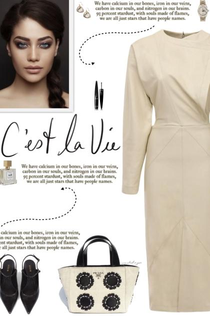 How to wear a Faux Lamb Long Sleeve Dress!