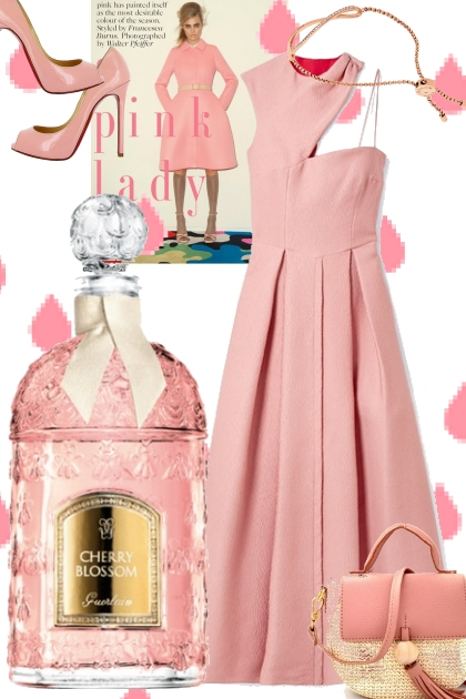 Pink Lady- Fashion set