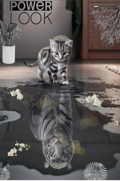 Majestic Kitten