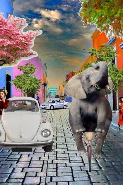 elephant drag