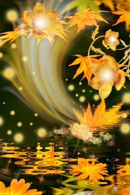 ORANGE REFLECTIONS BEAMING AS THEY BLOSSOM