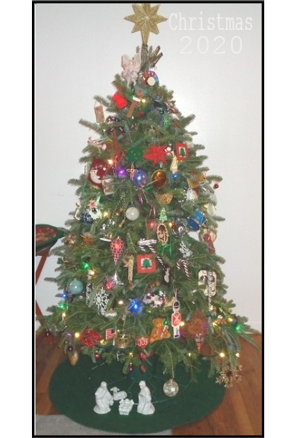 OUR TREE 11 ~ 25 ~ 2020