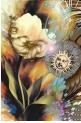 The Sun & the Flower