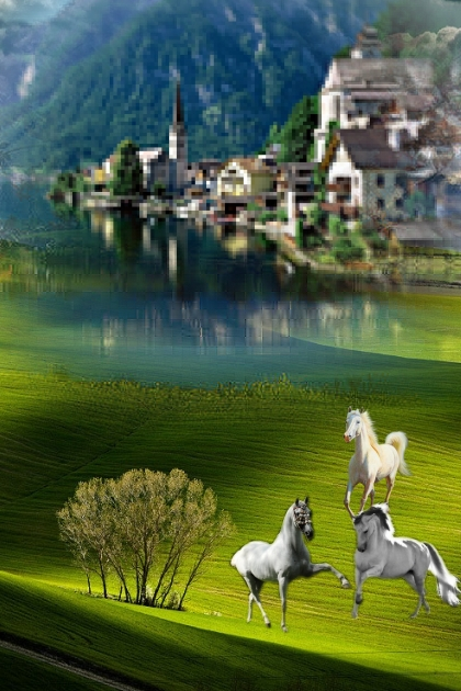 White horses on the meadow