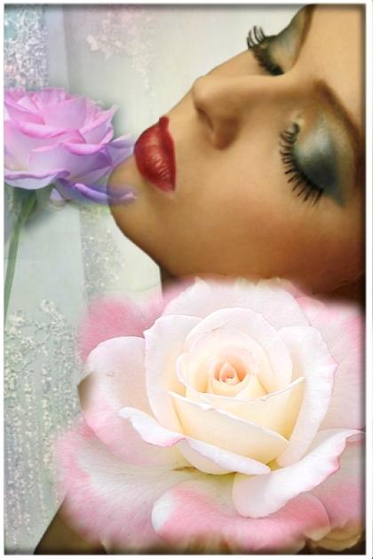 Sweet, sweet roses