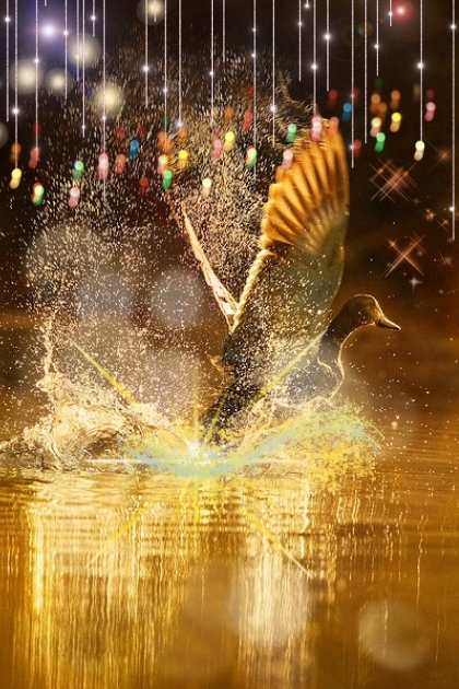 Golden goose- Fashion set