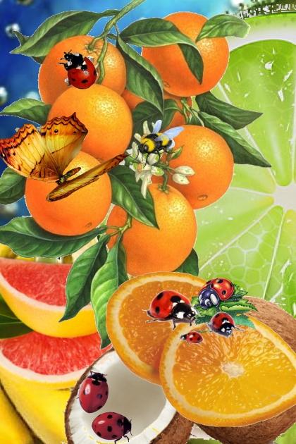 A flock of ladybirds