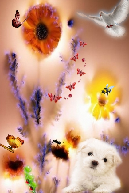 Flower shine
