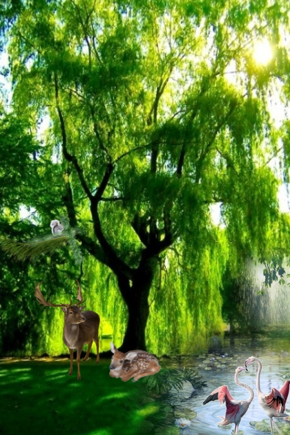 Forest idyll