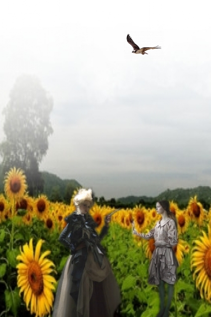 On the sunflower field