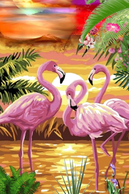 The world of flamingoes