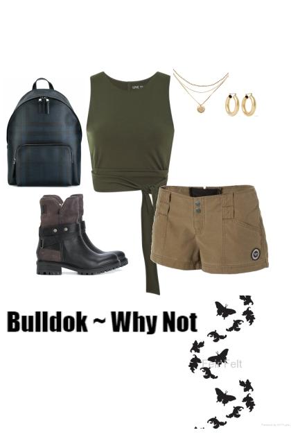Bulldok ~ Why Not