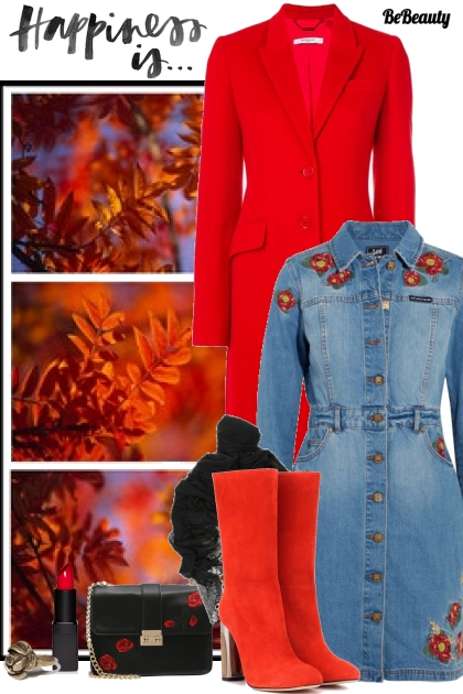 nr 308 - Embroidered Denim Dress