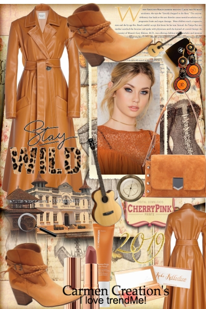 Journi's Country Western Outfite