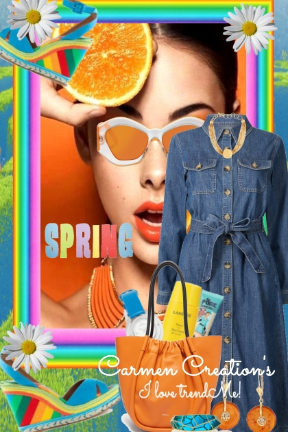 Journi's Spring Jean Dress Outfit