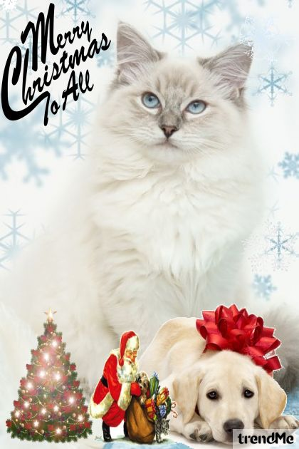 Merry Christmas to all...to cats and dogs too!