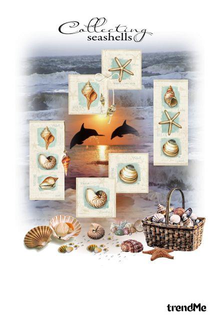 Seashells...- 搭配