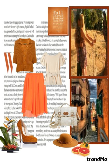 Orange world- Fashion set