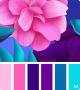 Clothes/footwear details (450) Pinterest (Uncategorized)